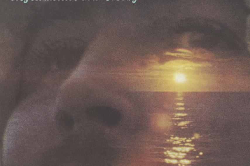 """Auf dem Albumcover """"If I Could Only Remember My Name"""" von David Crosby sieht man eine Nahaufnahme eines Gesichts. Drüber gelegt ist ein Sonnenuntergang über dem Meer."""