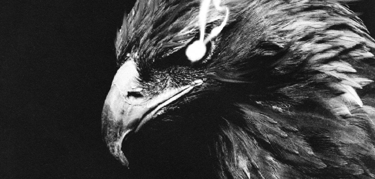 """Das Albumcover """"Hellbound"""" von Buckcherry ist schwarz-weiß und zeigt einen Adler, aus dessen Augen Rauch kommt."""
